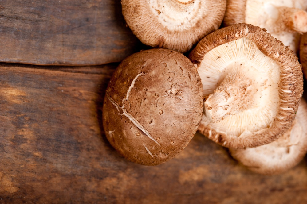 The Amazing Impacts of Medicinal Mushrooms on Health